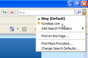 IE7 Search bar